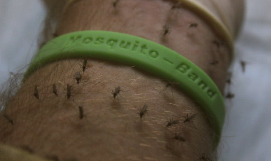 Mosquito Block Scam