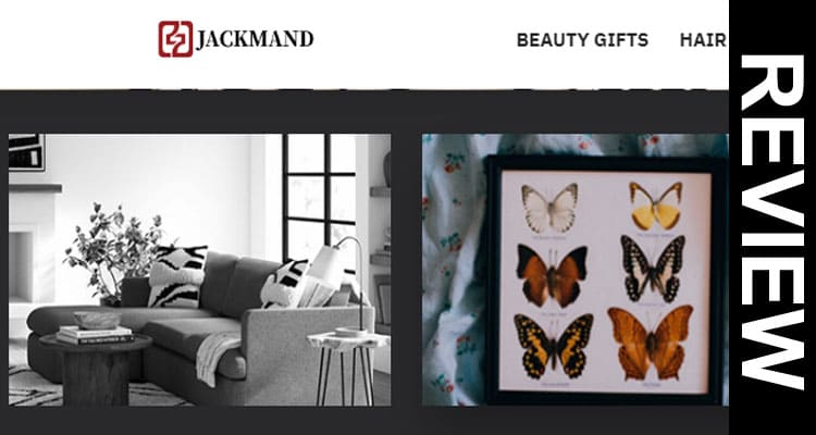 Jackmand Website Reviews 2020