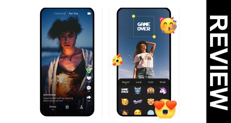 Zynn App Reviews 2020