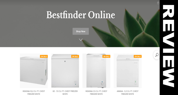 Bestfinder Online com Reviews