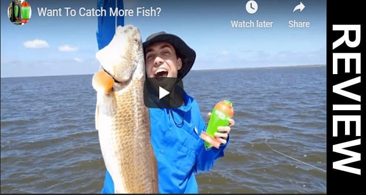 Tactibite Fish Call Reviews 2020