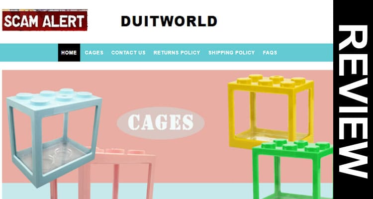 Duitworld Reviews 2020