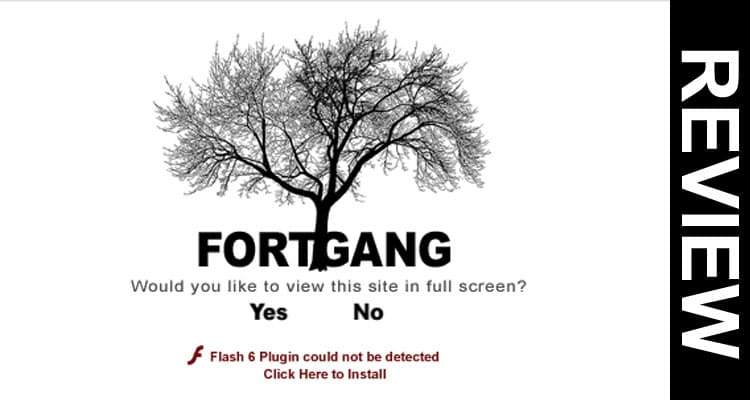 Fortgang.com Free Skins 2020