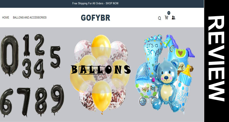 Gofybr Review 2020