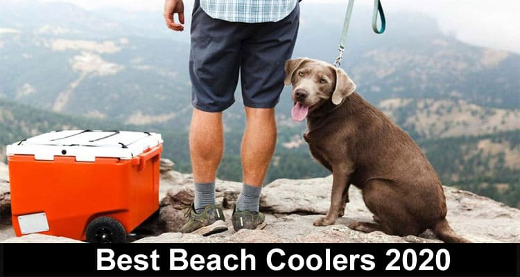 Best Beach Coolers 2020