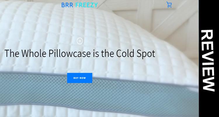 Freezy Pillow 2020