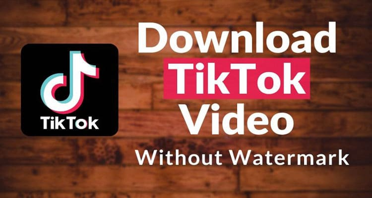 Download Tiktok Videos Without Watermark 2020