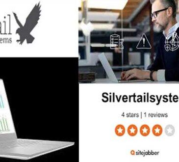 Silvertail Associates 2020