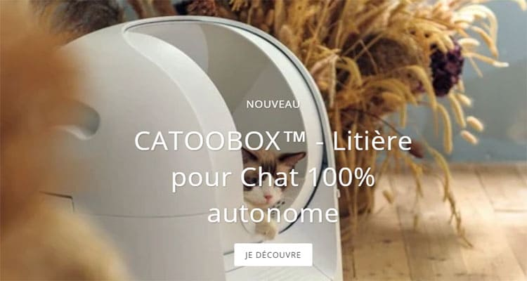 Catoobox Avis 2020