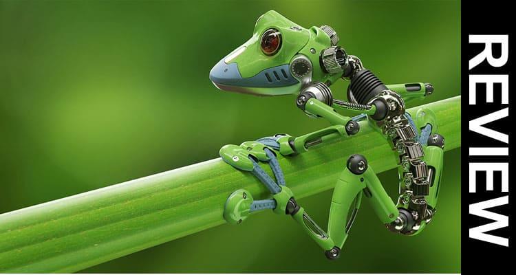First Living Robot Frog Stem Cells 2021