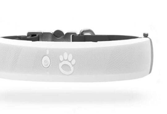Halo-Collar-Review
