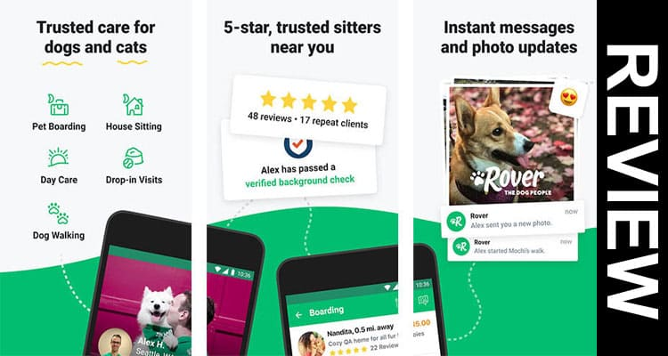 Seattle-Based-Pet-Services-