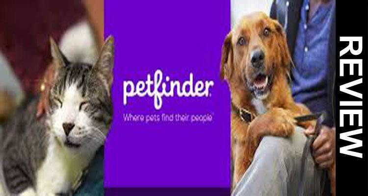 Is-Petfinder-Down-2021