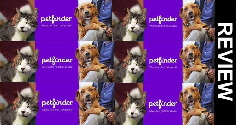Petfinder Website Not Working 2021