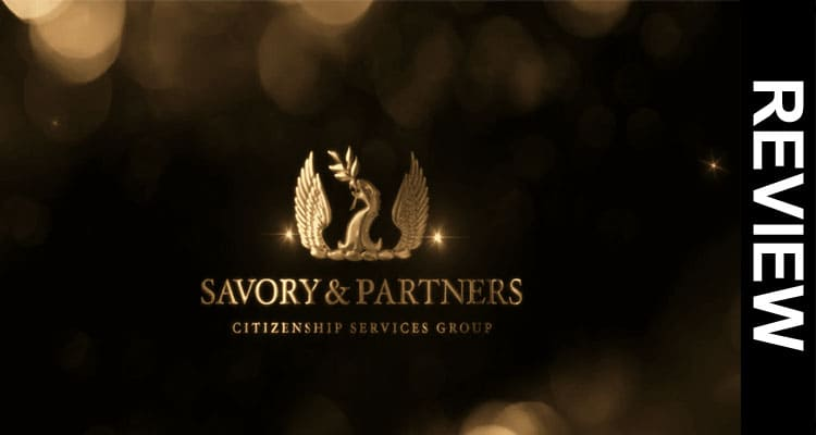 Savory-And-Partners-Blog-Re