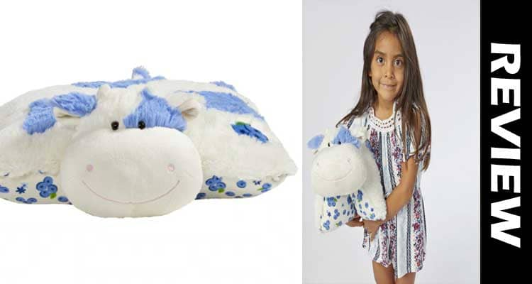 Blueberry Pillow Pet Reviews smoothcreationsonline