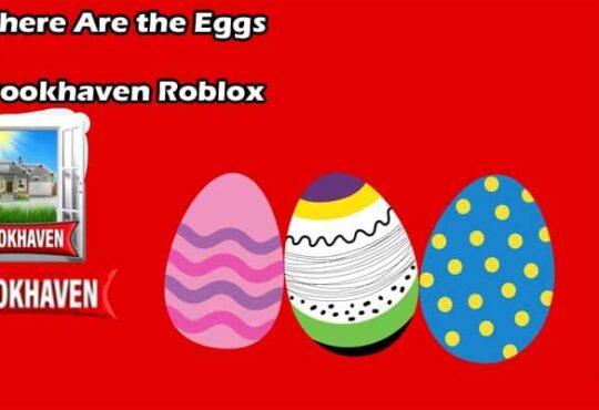 Where Are the Eggs in Brookhaven Roblox 2021