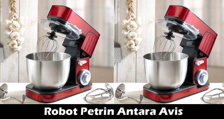 Robot Petrin Antara Avis 2021